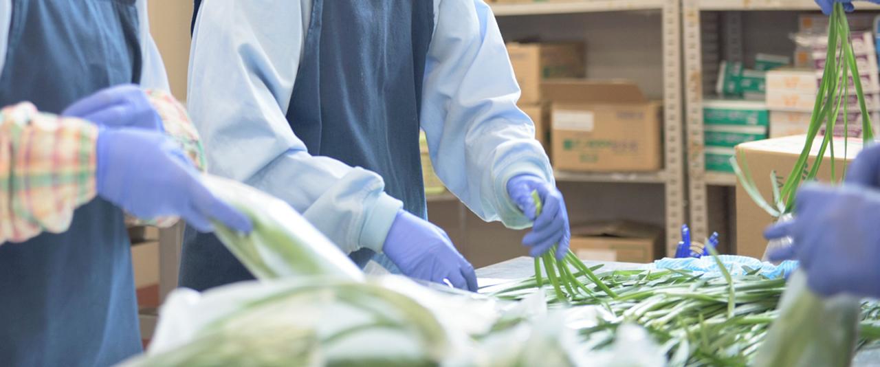 株式会社ヨシケイ大宮・株式会社ヨシケイ大阪南で働く製造スタッフの一日